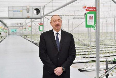 Prezident İlham Əliyev: Dövlət qurumlarında struktur islahatlarının bir məqsədi var ki, işimizi daha da yüksək səviyyədə quraq