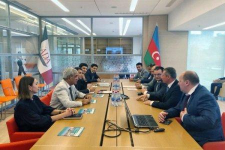 Azərbaycan və Ukrayna təhsil sahəsində əməkdaşlığı genişləndirir