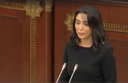 Azərbaycanda yeni Ombudsman seçildi