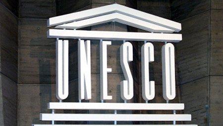 Multikulturalizmin Azərbaycan modeli UNESKO-da müzakirə edilib