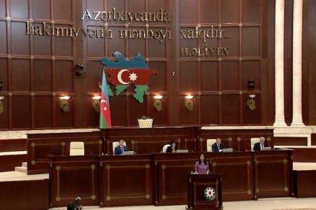 Milli Məclis Ombudsmanın illik məruzəsini qəbul etdi