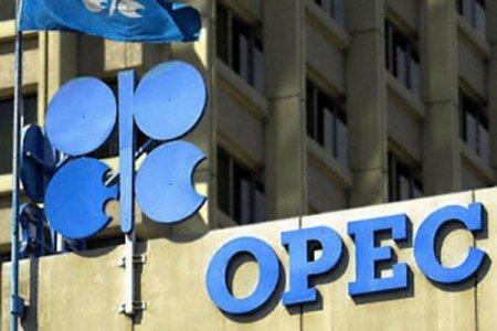 Neftin qiyməti ikiqat dəyişəcək - OPEC prezidenti açıqladı