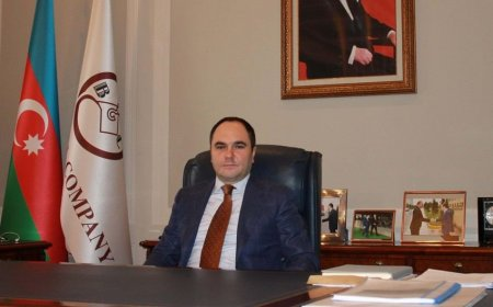Rasim Məmmədovun cinayət əməlləri açıqlandı - DTX məlumat yayıb