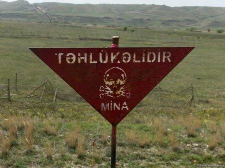 Ötən həftə 114 hektar ərazi minalardan təmizlənib