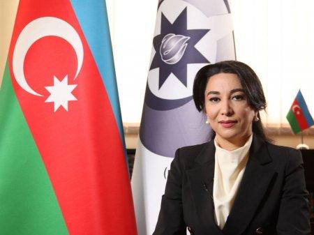 Ombudsman Səbinə Əliyeva Qarabağ Müşahidə Qrupunun apardığı faktaraşdırıcı missiyadan danışıb (MÜSAHİBƏ)