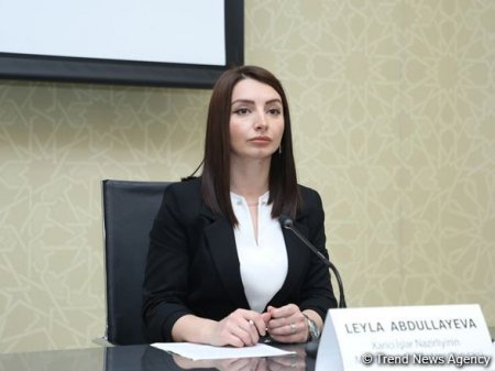 Azərbaycan-İran sərhədi yaxınlığında hər hansı üçüncü qüvvələrin olması ilə bağlı fikirlərin əsası yoxdur - Leyla Abdullayeva